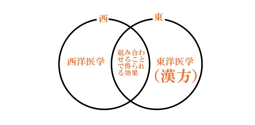 尼崎市のしぎょう循環器内科・内科・皮膚科・アレルギー科 漢方による治療 西洋医学に漢方を組み合わせることで得られる効果